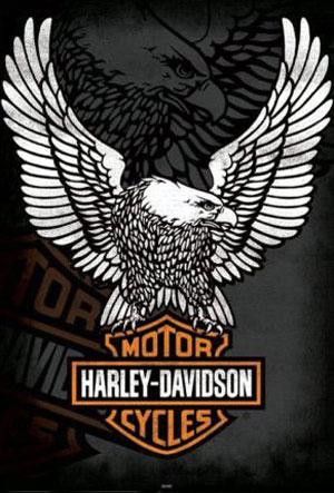 PV140-HARLEY-DAVIDSON-STEMM
